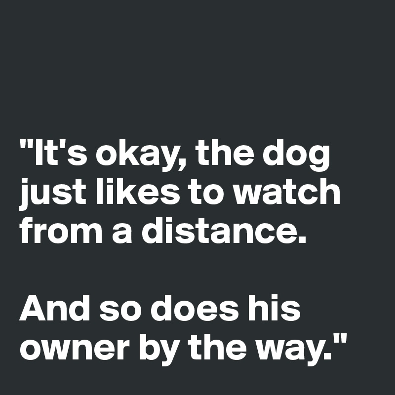 """It's okay, the dog just likes to watch  from a distance.  And so does his owner by the way."""