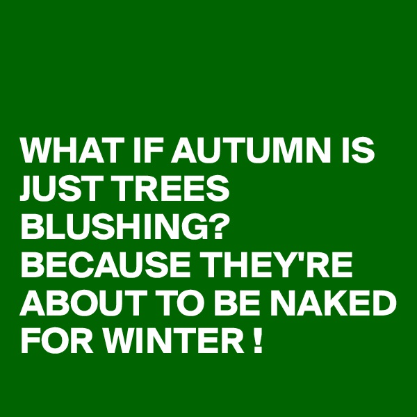 WHAT IF AUTUMN IS JUST TREES BLUSHING? BECAUSE THEY'RE ABOUT TO BE NAKED FOR WINTER !