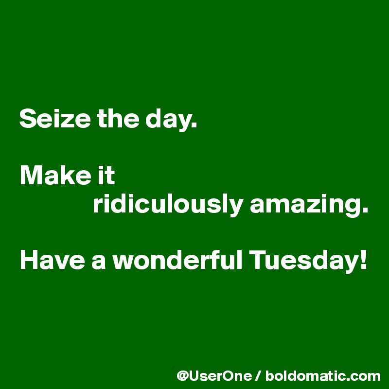 Seize The Day Make It Ridiculously Amazing Have A Wonderful