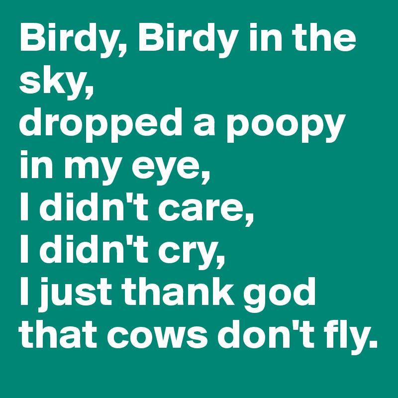 Birdy, Birdy in the sky, dropped a poopy in my eye, I didn't