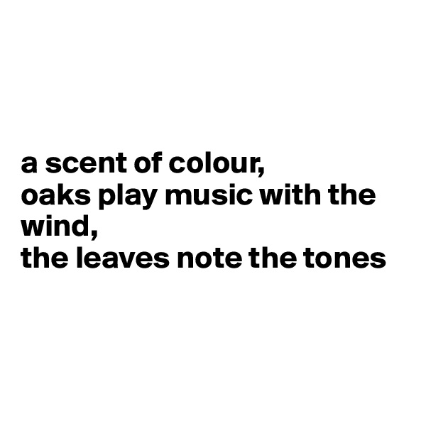 a scent of colour, oaks play music with the wind, the leaves note the tones