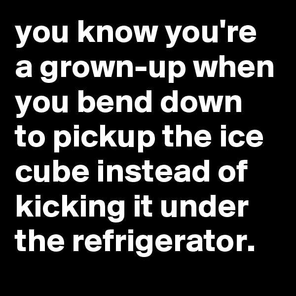 you know you're a grown-up when you bend down to pickup the ice cube instead of kicking it under the refrigerator.