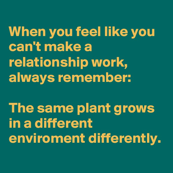 When you feel like you can't make a relationship work, always remember:  The same plant grows in a different enviroment differently.