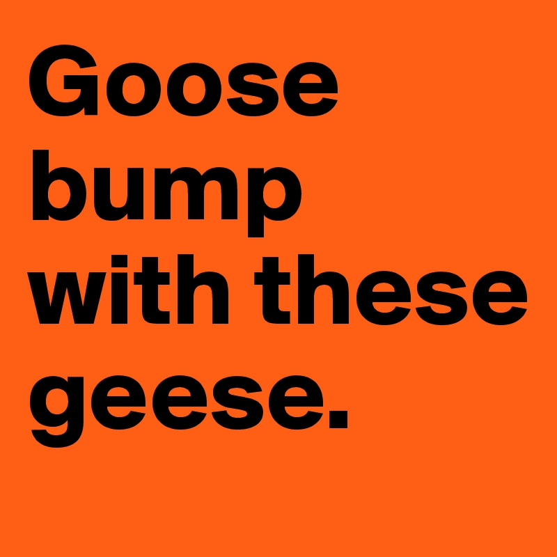 Goose bump with these geese.