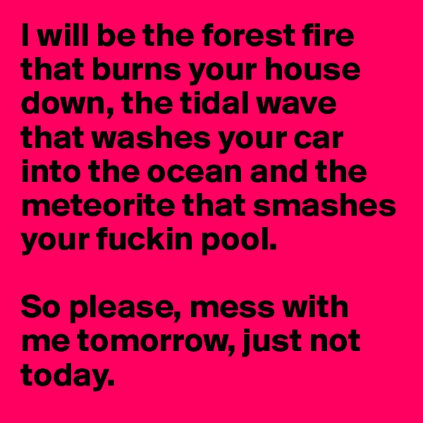 I will be the forest fire that burns your house down, the tidal wave that washes your car into the ocean and the meteorite that smashes your fuckin pool.  So please, mess with me tomorrow, just not today.