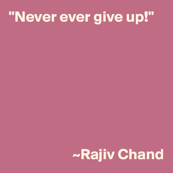 """Never ever give up!""                                                                                            ~Rajiv Chand"
