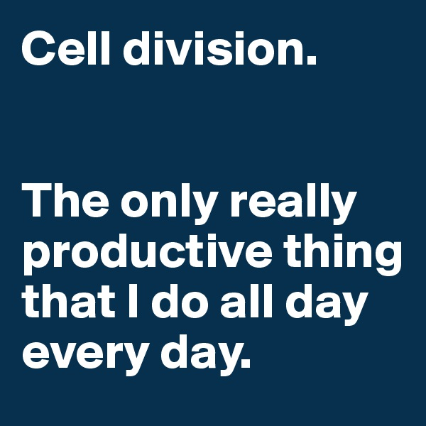 Cell division.    The only really productive thing that I do all day every day.