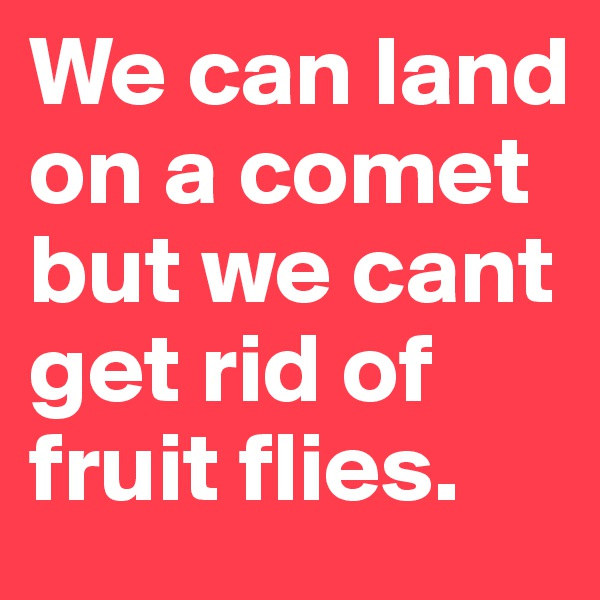 We can land on a comet but we cant get rid of fruit flies.