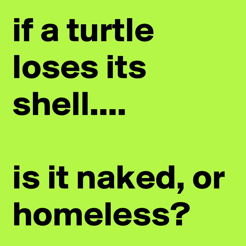 if a turtle loses its shell....  is it naked, or homeless?