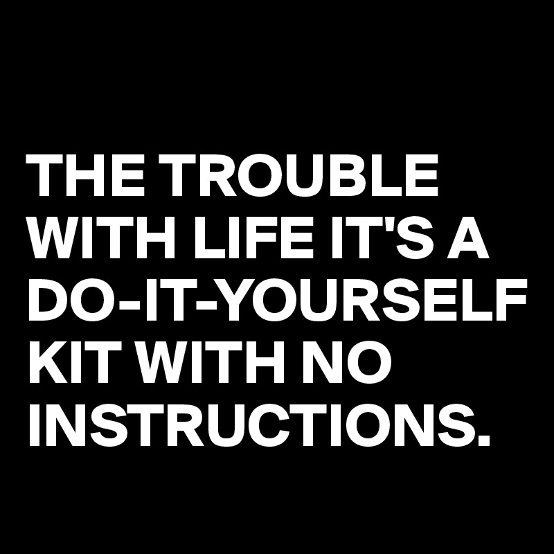 The Trouble With Life Its A Do It Yourself Kit With No Instructions