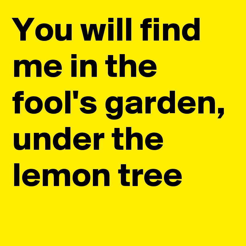 You will find me in the fool's garden, under the lemon tree