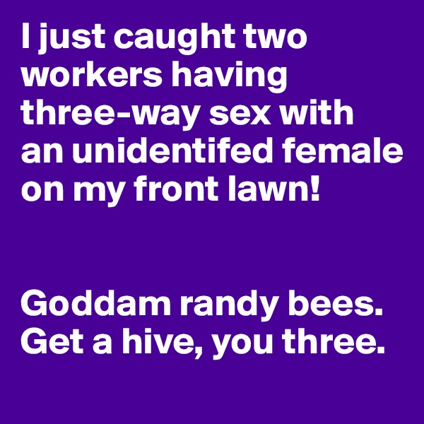 I just caught two workers having three-way sex with an unidentifed female on my front lawn!   Goddam randy bees. Get a hive, you three.