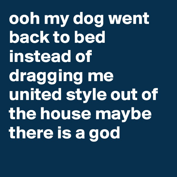 ooh my dog went back to bed instead of dragging me united style out of the house maybe there is a god