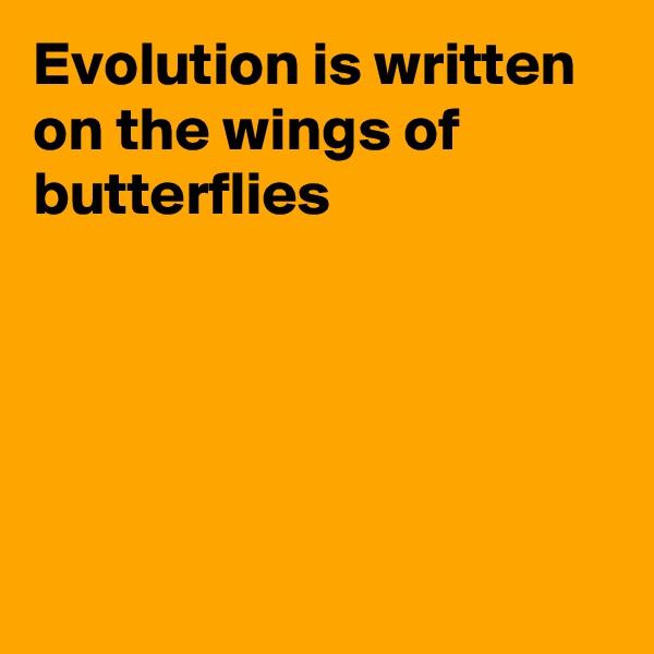 Evolution is written on the wings of butterflies