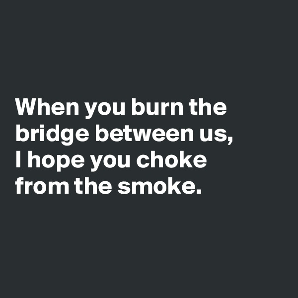 When you burn the bridge between us, I hope you choke  from the smoke.
