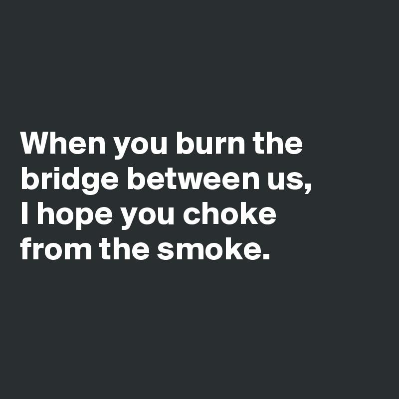 When you burn the bridge between us, I hope you choke  from the smoke.