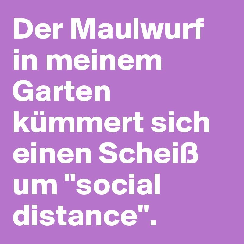 """Der Maulwurf in meinem Garten kümmert sich einen Scheiß um """"social distance""""."""