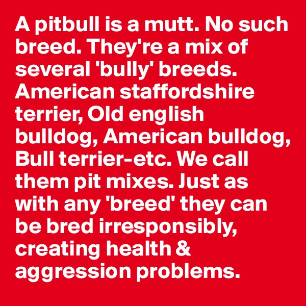 A pitbull is a mutt. No such breed. They're a mix of several 'bully' breeds. American staffordshire terrier, Old english bulldog, American bulldog, Bull terrier-etc. We call them pit mixes. Just as with any 'breed' they can be bred irresponsibly, creating health & aggression problems.