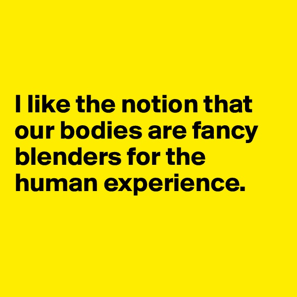 I like the notion that our bodies are fancy blenders for the human experience.