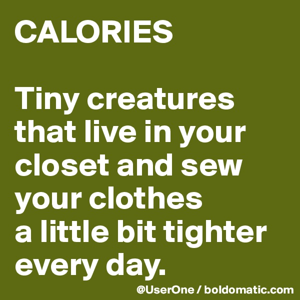 CALORIES  Tiny creatures that live in your closet and sew your clothes a little bit tighter every day.