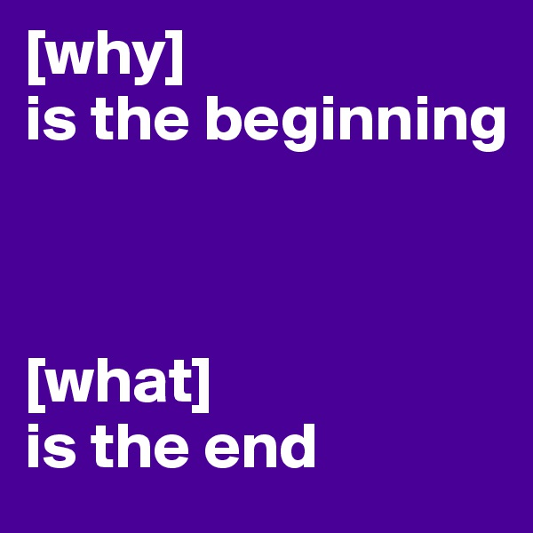 [why]  is the beginning                              [what]  is the end