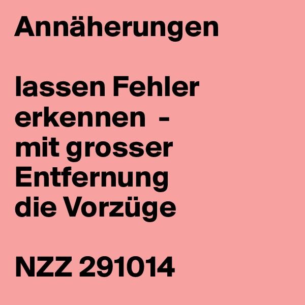 Annäherungen  lassen Fehler erkennen  - mit grosser Entfernung die Vorzüge  NZZ 291014