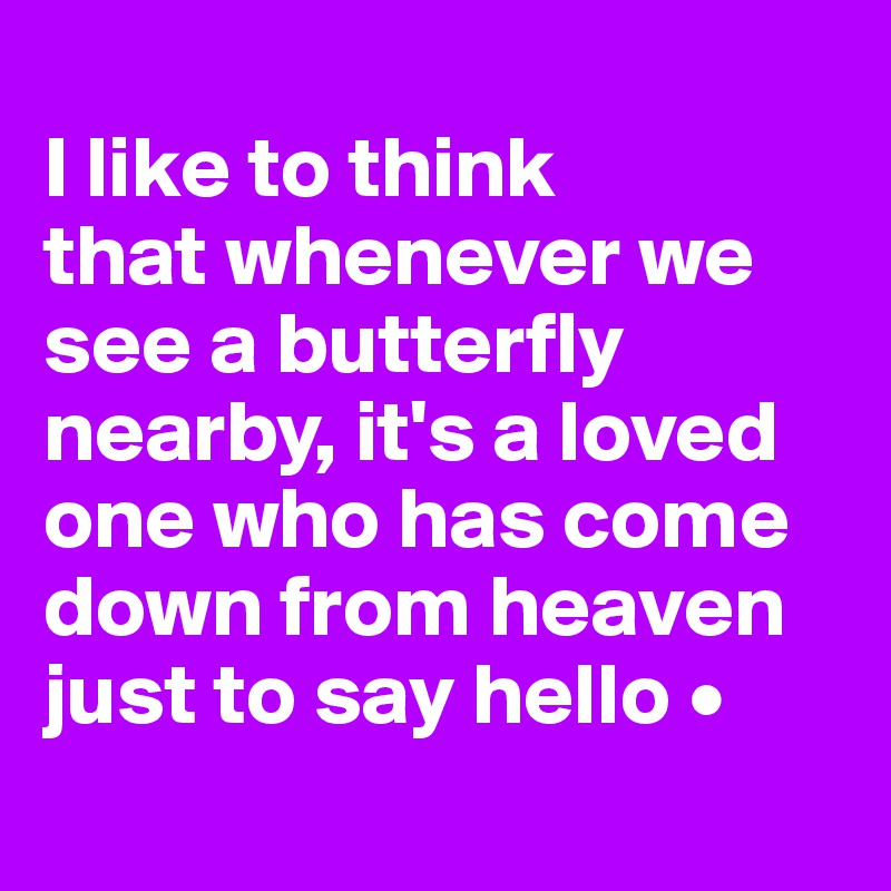 I like to think that whenever we see a butterfly nearby, it's a loved one who has come down from heaven just to say hello •