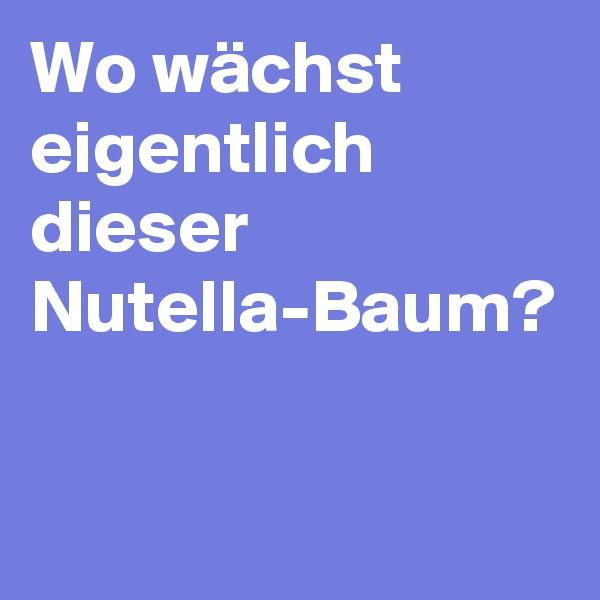 Wo wächst eigentlich dieser Nutella-Baum?