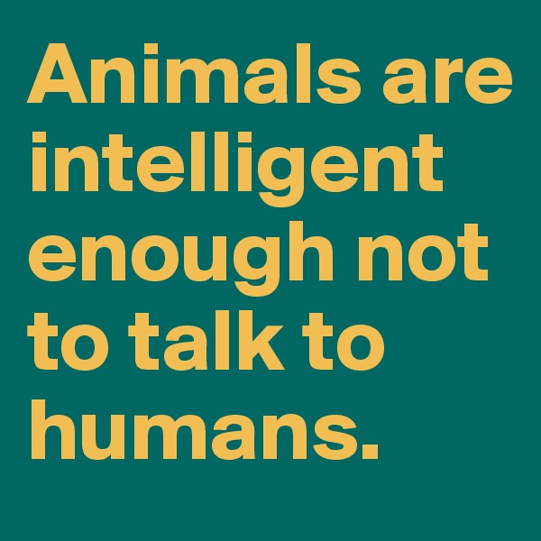 Animals are intelligent enough not to talk to humans.