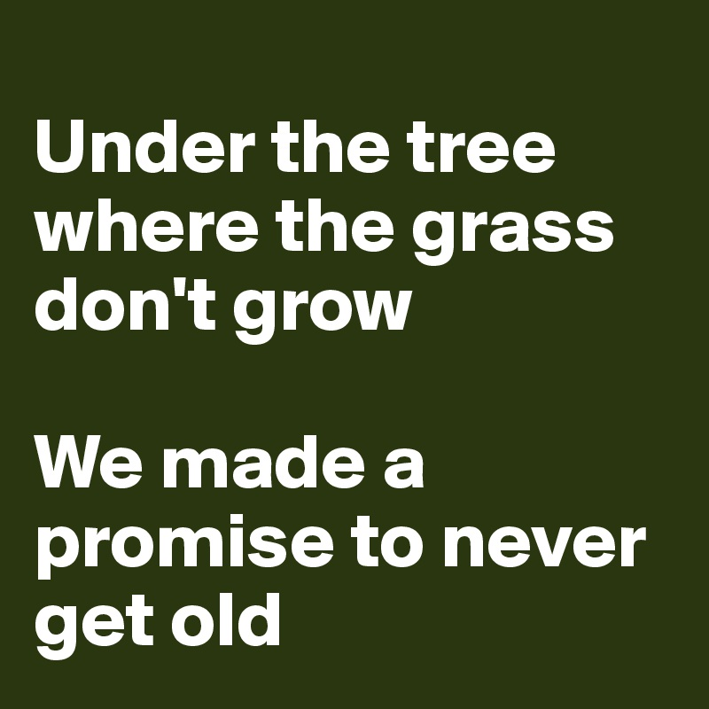 Under the tree where the grass don't grow  We made a promise to never get old