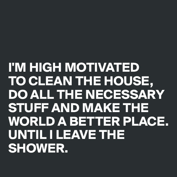 I'M HIGH MOTIVATED   TO CLEAN THE HOUSE,  DO ALL THE NECESSARY STUFF AND MAKE THE WORLD A BETTER PLACE.  UNTIL I LEAVE THE SHOWER.