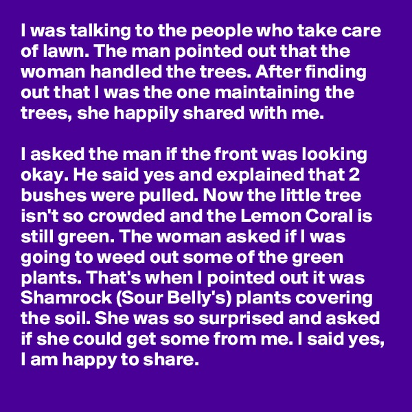 I was talking to the people who take care of lawn. The man pointed out that the woman handled the trees. After finding out that I was the one maintaining the trees, she happily shared with me.  I asked the man if the front was looking okay. He said yes and explained that 2 bushes were pulled. Now the little tree isn't so crowded and the Lemon Coral is still green. The woman asked if I was going to weed out some of the green plants. That's when I pointed out it was Shamrock (Sour Belly's) plants covering the soil. She was so surprised and asked if she could get some from me. I said yes, I am happy to share.