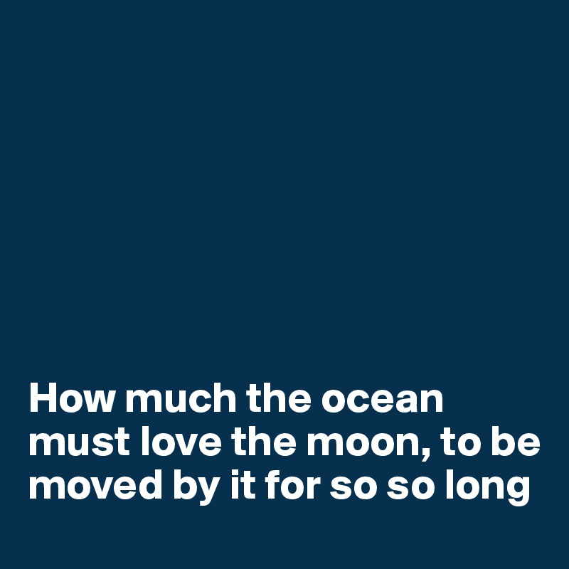 How much the ocean must love the moon, to be moved by it for so so long