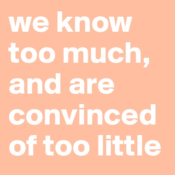 we know too much, and are convinced of too little