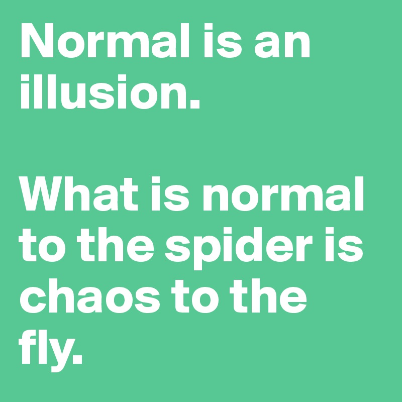 Normal is an illusion what is normal to the spider is chaos to the normal is an illusion what is normal to the spider is chaos to the fly altavistaventures Choice Image