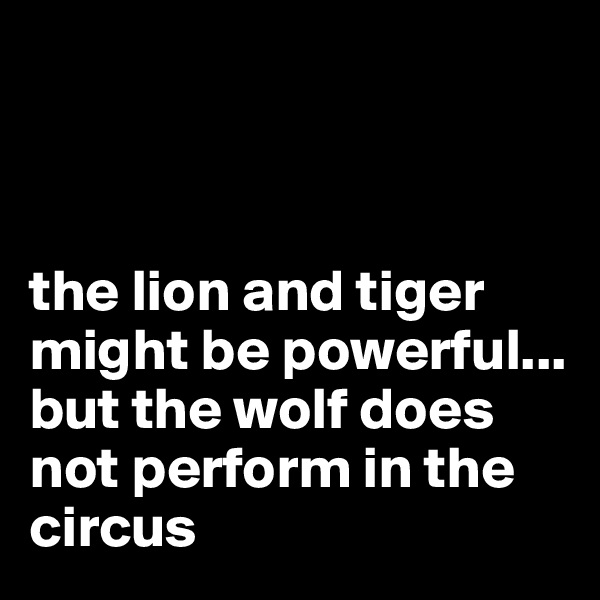 the lion and tiger might be powerful...  but the wolf does not perform in the circus