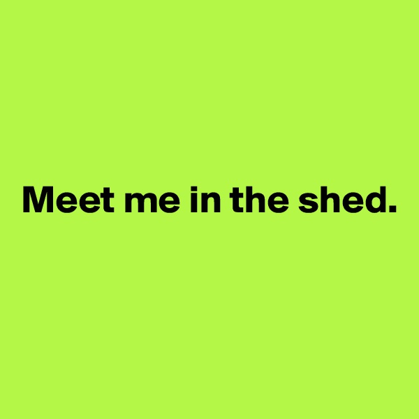 Meet me in the shed.