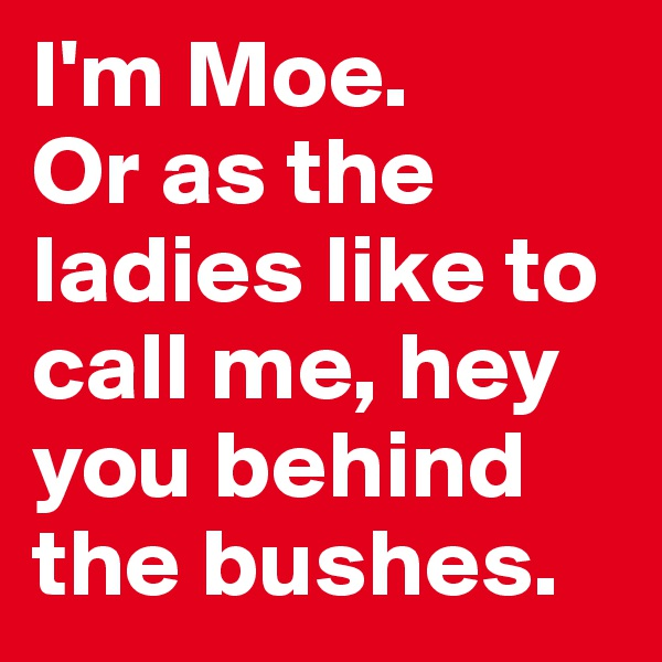 I'm Moe.  Or as the ladies like to call me, hey you behind the bushes.