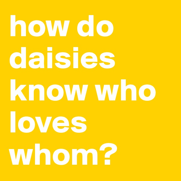 how do daisies know who loves whom?