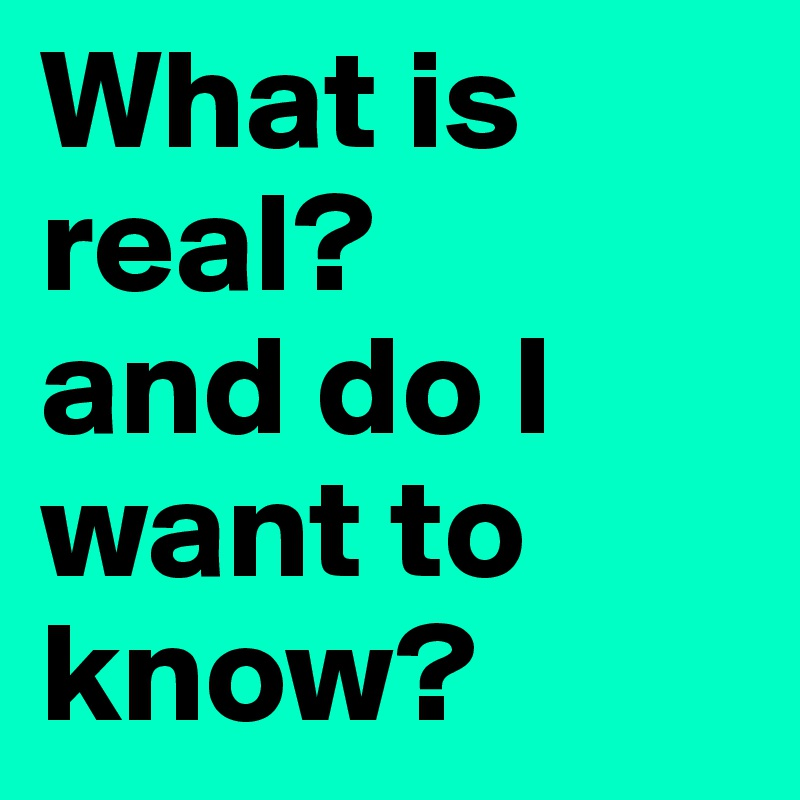 What is real? and do I  want to know?