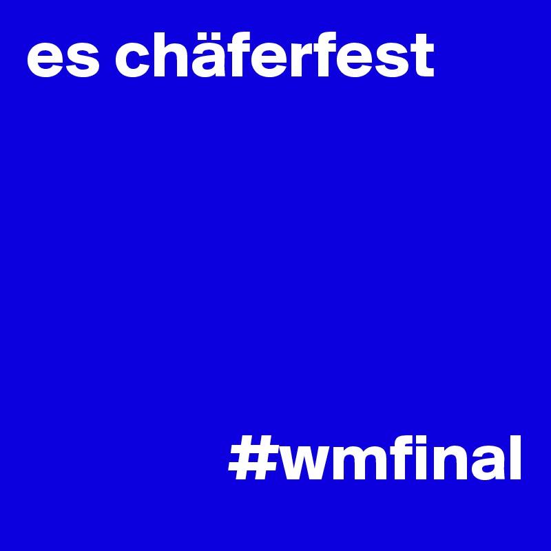 es chäferfest                      #wmfinal