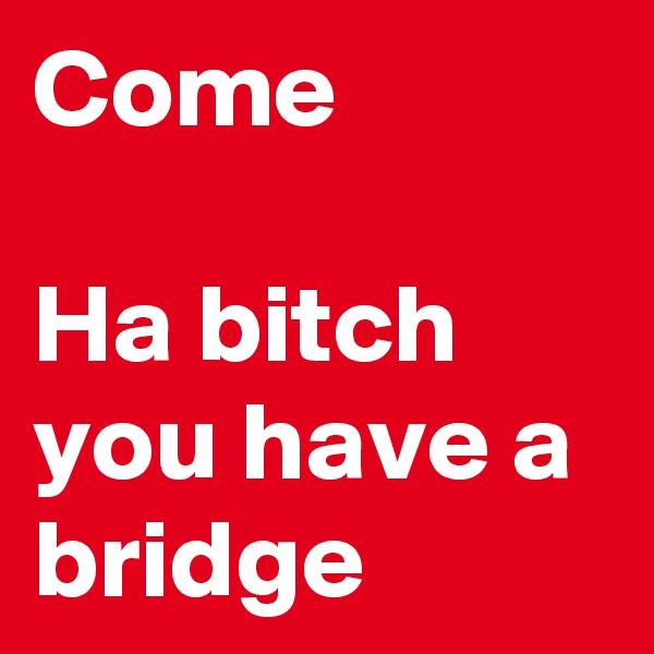 Come  Ha bitch you have a bridge