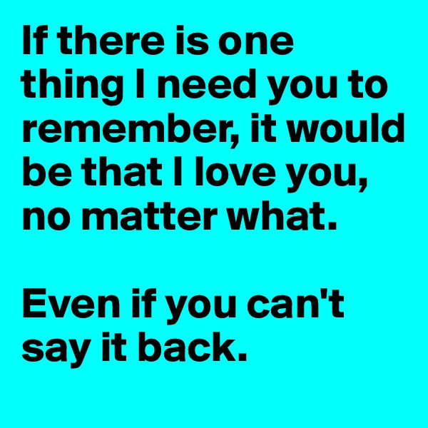 If there is one thing I need you to remember, it would be that I love you, no matter what.    Even if you can't say it back.
