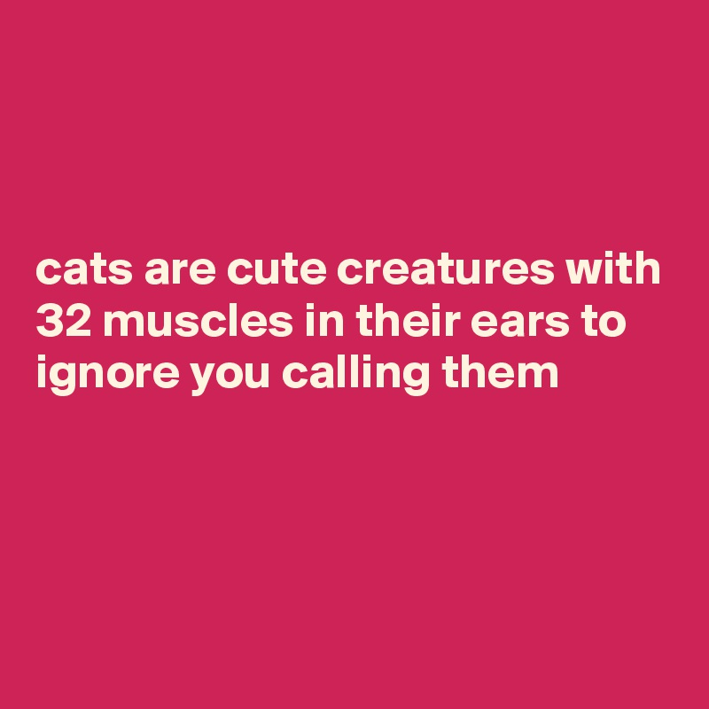 cats are cute creatures with 32 muscles in their ears to ignore you calling them
