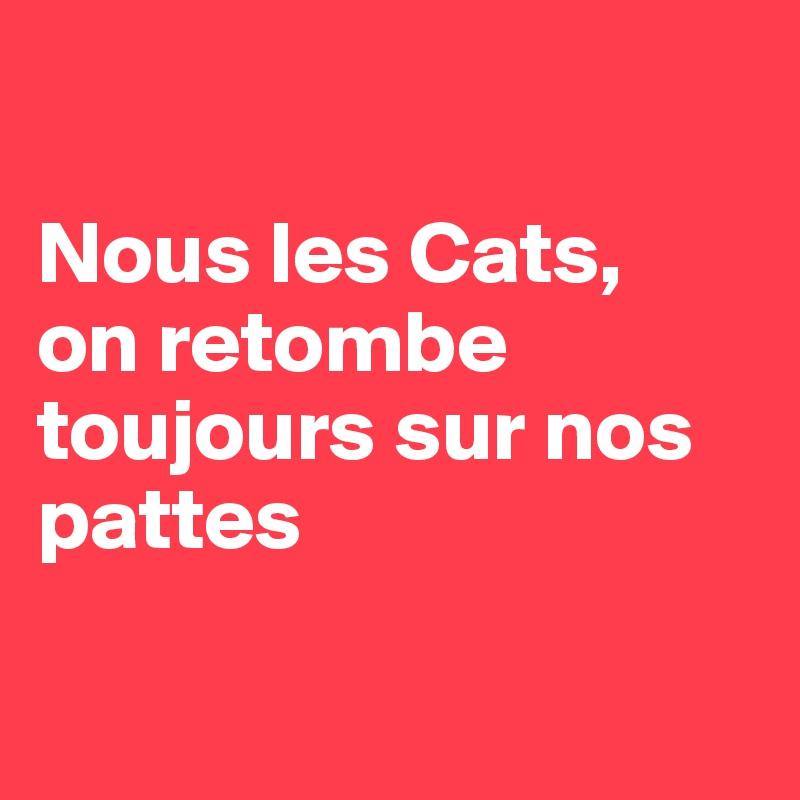 Nous les Cats, on retombe toujours sur nos pattes