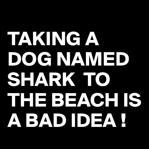 TAKING A DOG NAMED SHARK  TO THE BEACH IS A BAD IDEA !
