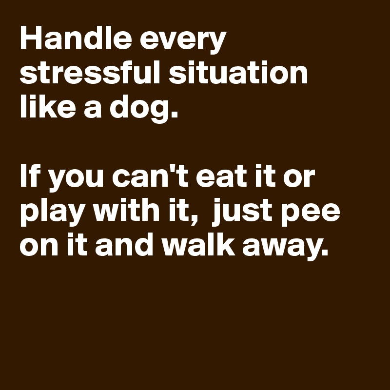 Handle every stressful situation like a dog.  If you can't eat it or play with it,  just pee on it and walk away.