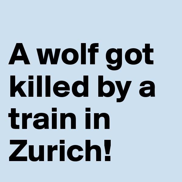A wolf got killed by a train in Zurich!