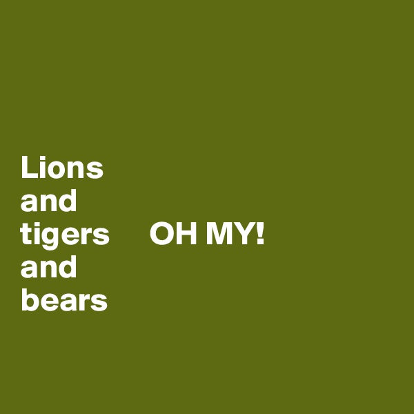 Lions and tigers      OH MY!  and bears