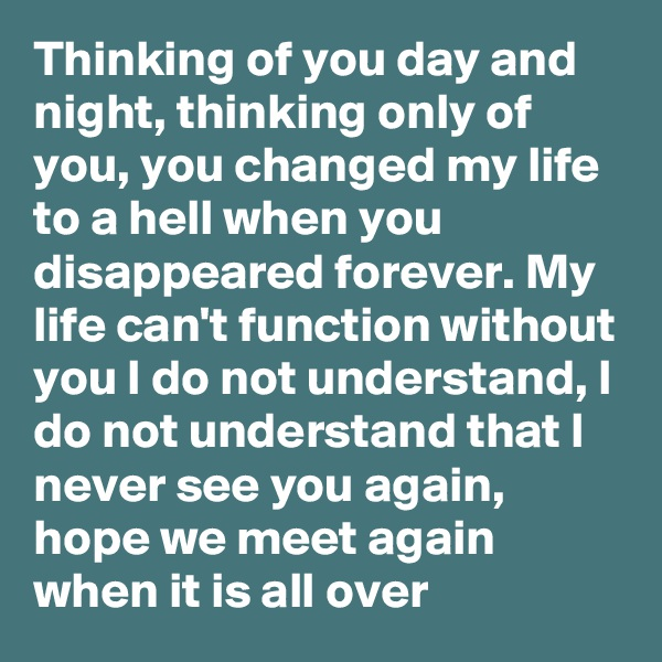Thinking of you day and night, thinking only of you, you changed my life to a hell when you disappeared forever. My life can't function without you I do not understand, I do not understand that I never see you again, hope we meet again when it is all over